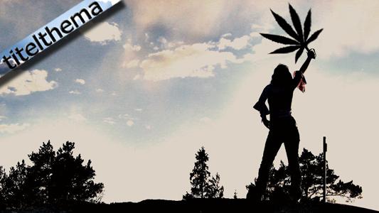 Cannabis Titelthema