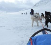 Spitzbergen: Klimawandel und die Eisbären