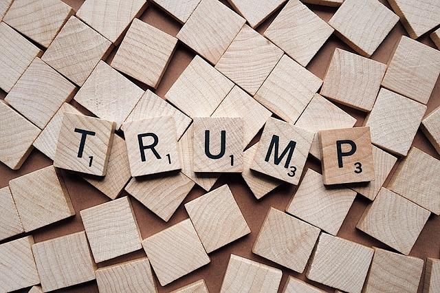 Donald Trump backview.eu